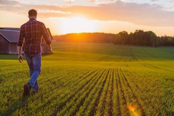 Tarımsal Girişimcilik Nedir?