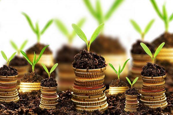 yatırım fonu nedir